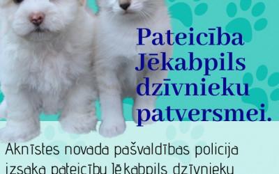 Pateicība Jēkabpils dzīvnieku patversmei.