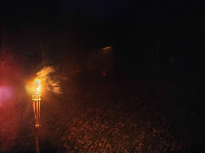 Gaismas ceļš Aknīstes novadā Latvijas dzimšanas dienā.